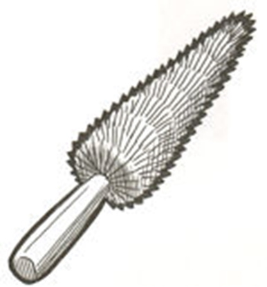 Picture of A1017 ~ Spoke Brush All Years